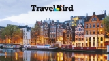 Travel Bird