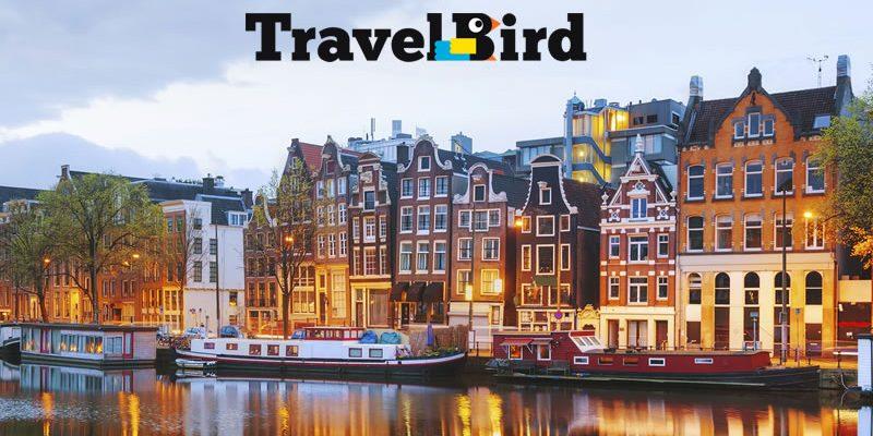Travel Bird
